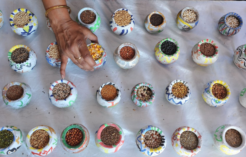 An Indian woman arranges a display of gr
