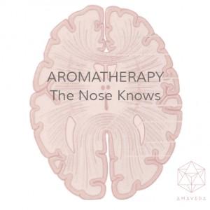Aromatherapy. Every Damn Day