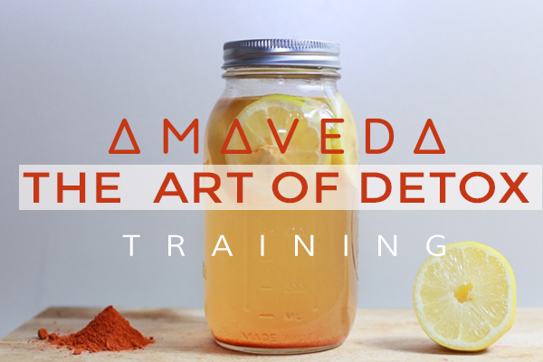 ART OF DETOX WEB
