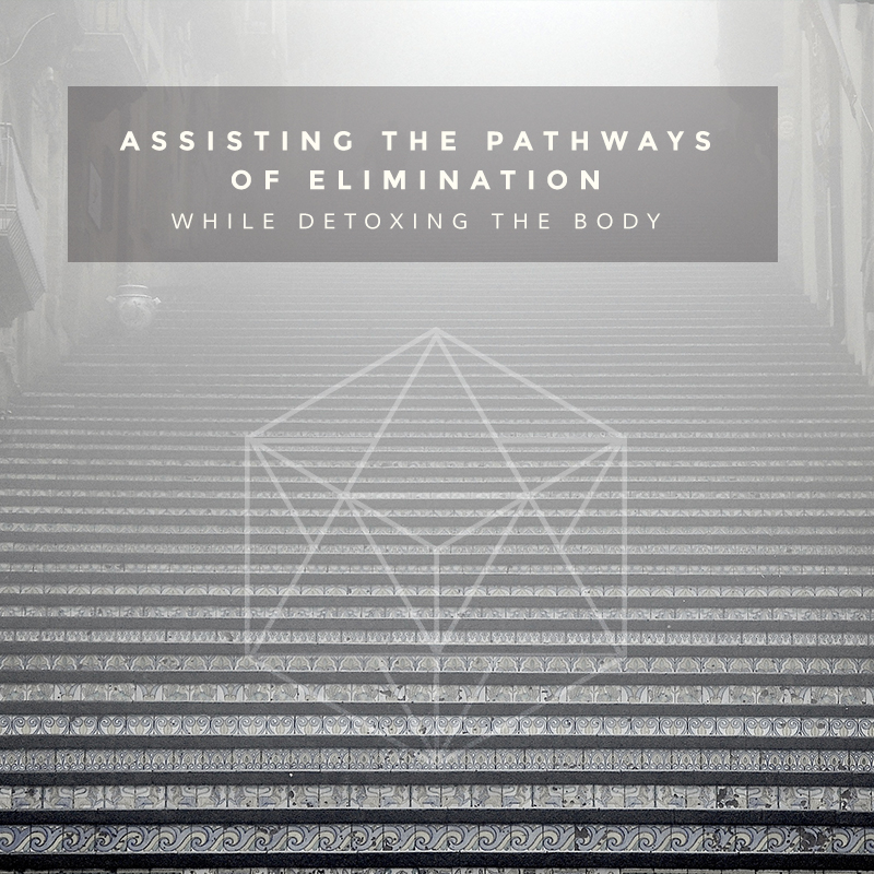 The detox path of least resistance: clearing the way for easy eliminaion