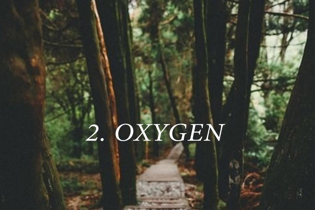 2.OXYGEN