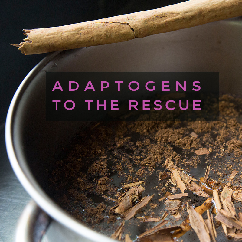 Adaptogens to the rescue