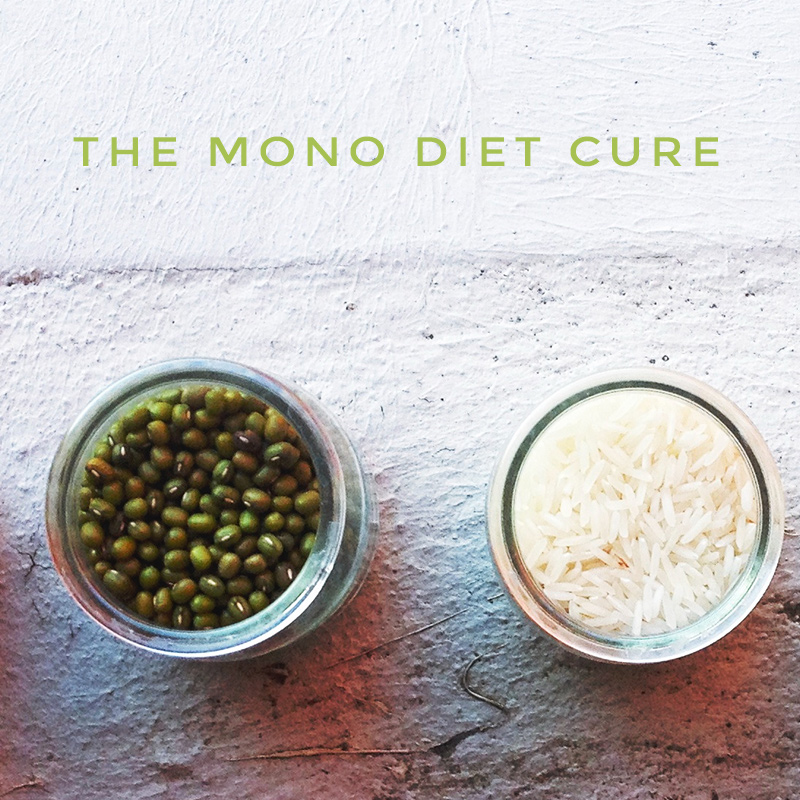 CURE ALMOST ANYTHING WITH ONE DISH AKA: The mono diet cure