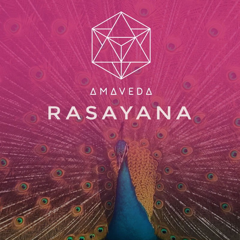 WHAT IS RASAYANA?
